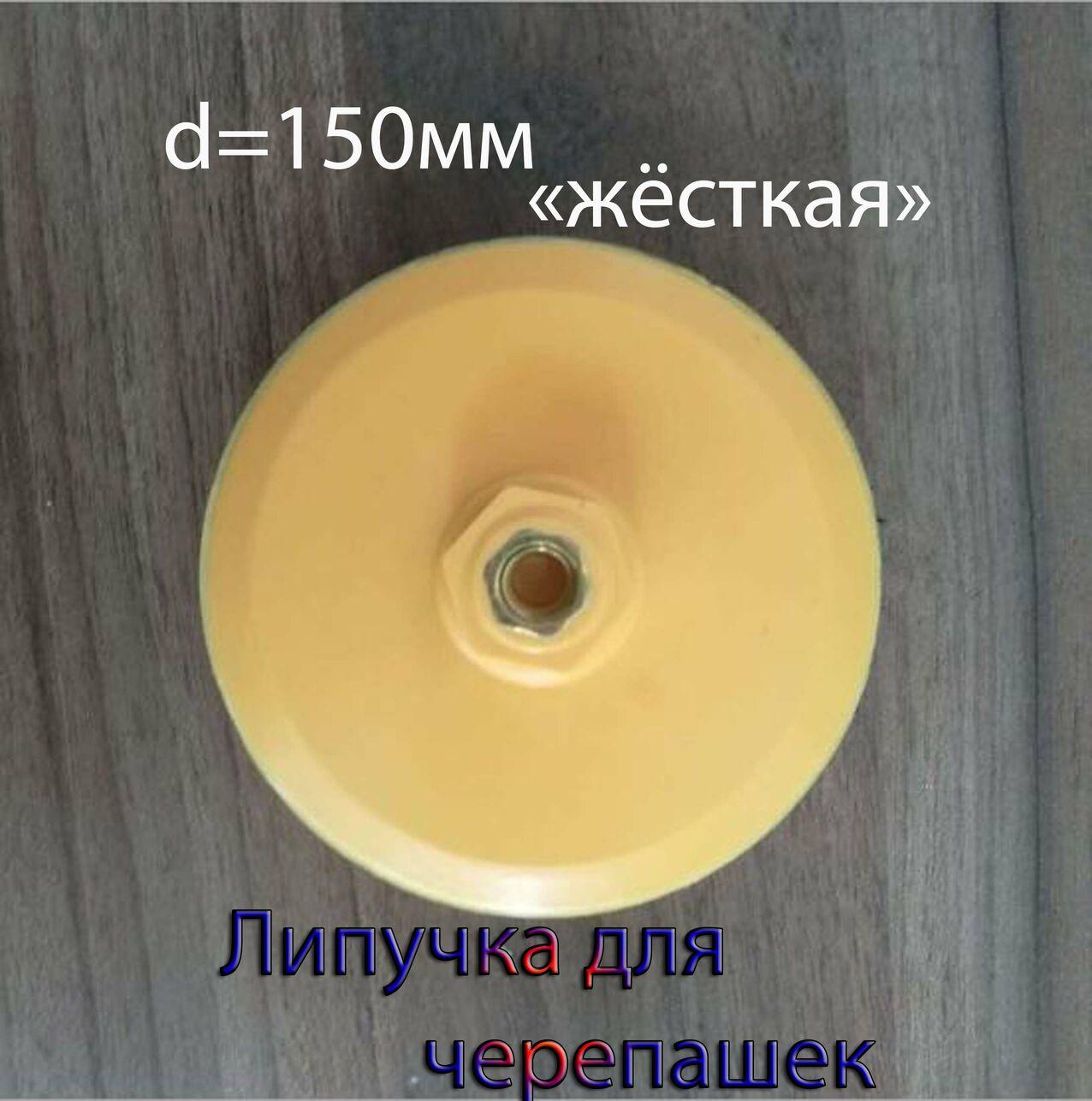 Липучка(крепление,держатель) жёсткая для алмазных гибких дисков черепашек d=150мм